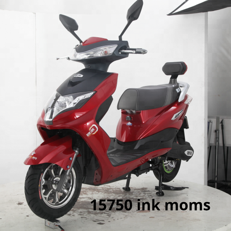 e-bike-e-scooter-EEC1600W-lithium-lead_edited3